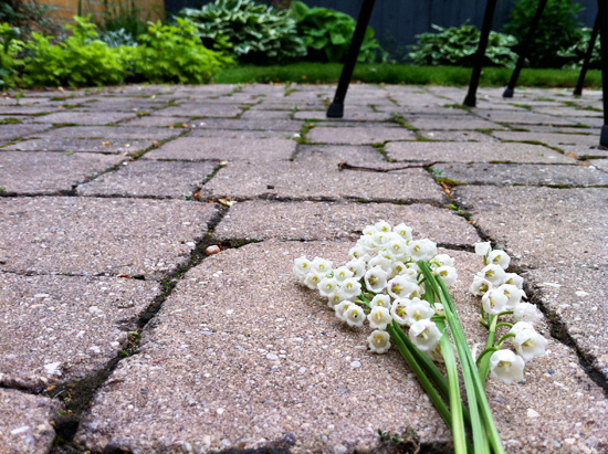 Lily of the Valley Sidewalk